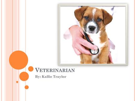 V ETERINARIAN By: Kallie Traylor. B RIEF D ESCRIPTION Vets are commonly known as animal doctors. They wear lab coats, they use needles and scalpels, and.