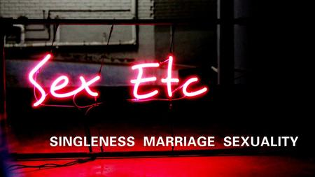 High View of Sex High View of Marriage High View of Singleness High View of Gender Diffs.