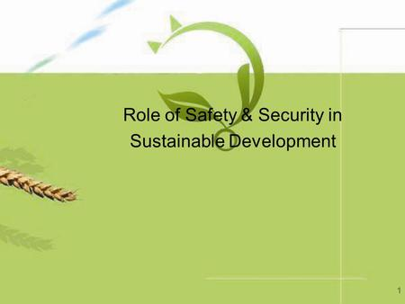 1 Role of Safety & Security in Sustainable Development.