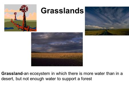 Grasslands Grassland-an ecosystem in which there is more water than in a desert, but not enough water to support a forest.