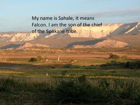 My name is Sahale, it means Falcon. I am the son of the chief of the Spokane tribe.