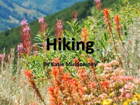 Hiking By Katie Muldowney. I chose this topic because… Because I love to hike -one place where I can completely relax - I also love wearing bandanas,