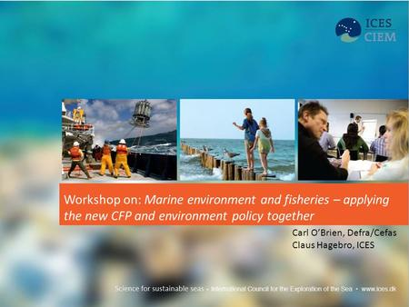 Workshop on: Marine environment and fisheries – applying the new CFP and environment policy together Carl O'Brien, Defra/Cefas Claus Hagebro, ICES.
