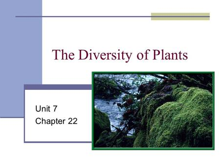 The Diversity of Plants Unit 7 Chapter 22. Nonvascular plant habitat Near water source.