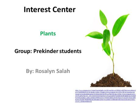 Interest Center Plants Group: Prekinder students By: Rosalyn Salah  =WXYq2f0ZQCzPmM:&imgrefurl=http://fitoagronomia.blogspot.com/2011/09/conoce-algunos-