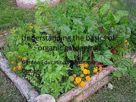 Understanding the basics of organic gardening Garden Education Experiment October 1.