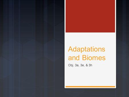 Adaptations and Biomes Obj. 3a, 3e, & 3h. Adaptations to an Environment  Every organism has a variety of adaptations that are suited to its specific.