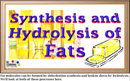 Fat molecules can be formed by dehydration synthesis and broken down by hydrolysis. We'll look at both of these processes here.
