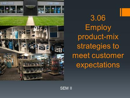 3.06 Employ product-mix strategies to meet customer expectations SEM II.