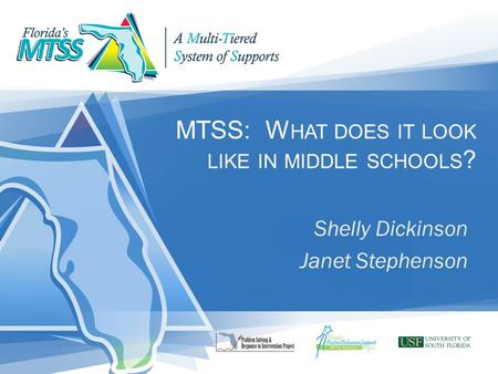 MTSS: W HAT DOES IT LOOK LIKE IN MIDDLE SCHOOLS ? Shelly Dickinson Janet Stephenson.