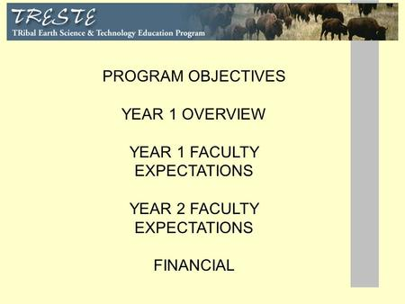PROGRAM OBJECTIVES YEAR 1 OVERVIEW YEAR 1 FACULTY EXPECTATIONS YEAR 2 FACULTY EXPECTATIONS FINANCIAL.