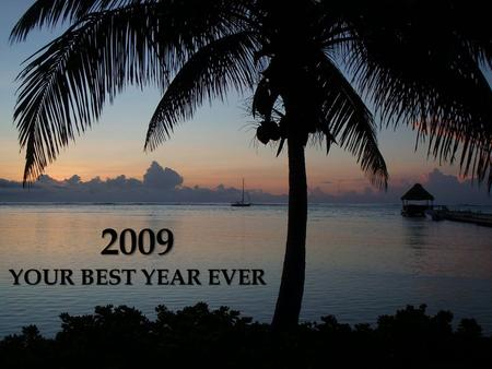 2009 YOUR BEST YEAR EVER.  The Perfect Product for your Health Plan A  The Perfect Product for your Financial Plan B.