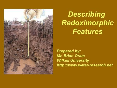 Describing Redoximorphic Features Prepared by: Mr. Brian Oram Wilkes University