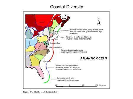 Coastal Diversity. Atlantic North: Glaciated Coast Coasts are deeply indented and bordered by numerous rocky islands. The embayments usually have straight.