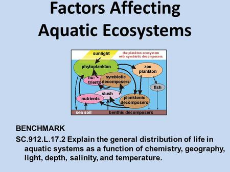 Factors Affecting Aquatic Ecosystems BENCHMARK SC.912.L.17.2 Explain the general distribution of life in aquatic systems as a function of chemistry, geography,
