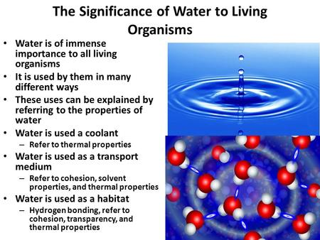 1 The Significance of Water to Living Organisms Water is of immense importance to all living organisms It is used by them in many different ways These.