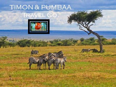 TIMON & PUMBAA Travel Co.. Location Features Large expanse of grassland with punctuated trees and shrubs Trees are Characteristically flat topped and.