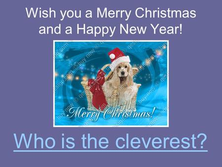 Wish you a Merry Christmas and a Happy New Year! Who is the cleverest?