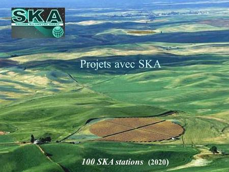 1 100 SKA stations (2020 ) Projets avec SKA. 2 Telescope Project (~2020) for a giant radiotelescope in the centimetre-metre range one square kilometre.