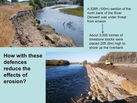 A 328ft (100m) section of the north bank of the River Derwent was under threat from erosion About 3,000 tonnes of limestone blocks were placed 20ft (6m)