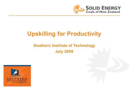 Upskilling for Productivity Southern Institute of Technology July 2009.