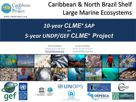 Caribbean & North Brazil Shelf Large Marine Ecosystems 10-year CLME + SAP and 5-year UNDP/GEF CLME + Project Patrick DebelsLaverne Walker Regional CoordinatorSenior.
