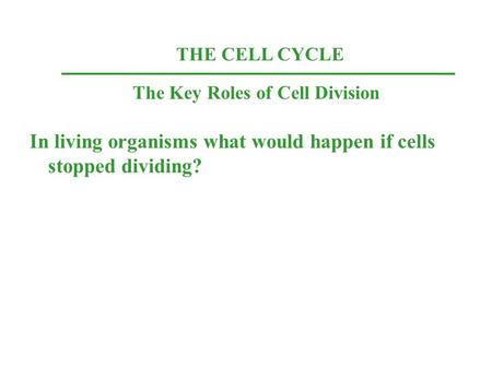 THE CELL CYCLE The Key Roles of Cell Division In living organisms what would happen if cells stopped dividing?
