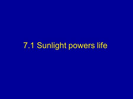 7.1 Sunlight powers life. I. Obtaining Food A.Autotrophs are organisms that obtain their energy through the process of photosynthesis such as green plants.