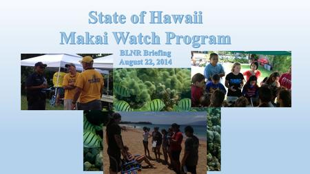 Makai Watch Human-use monitoring and Biological Literacy Education ( HUMBLE ) Optional Awareness Raising and Outreach (ARO) Observation and Incidence.