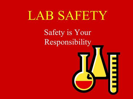 LAB SAFETY Safety is Your Responsibility No Horse-play in the Lab……