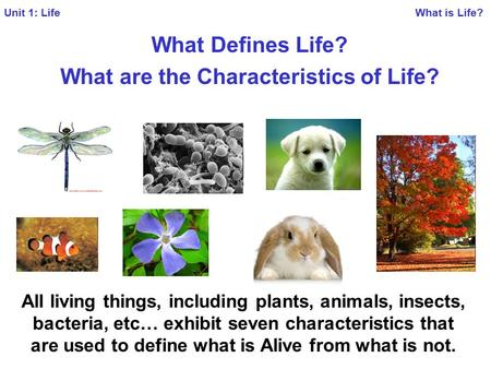 seven characteristics of living organisms It is common for 5-7 year old students to have no conception of humans as  animals  living things have a variety of characteristics that are displayed to  different.