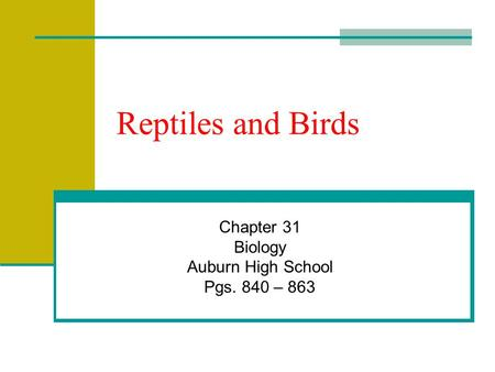 Reptiles and Birds Chapter 31 Biology Auburn High School Pgs. 840 – 863.