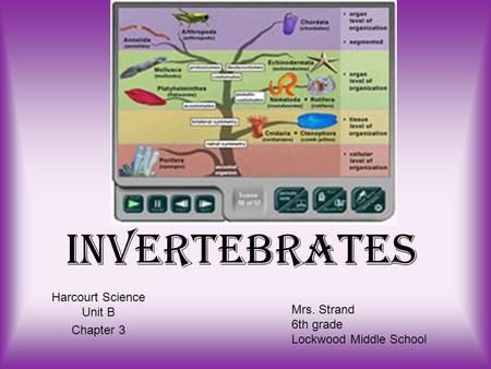 Invertebrates Harcourt Science Unit B Chapter 3 Mrs. Strand 6th grade Lockwood Middle School.