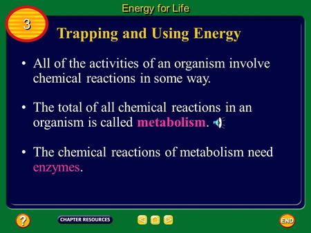 Trapping and Using Energy All of the activities of an organism involve chemical reactions in some way. The total of all chemical reactions in an organism.