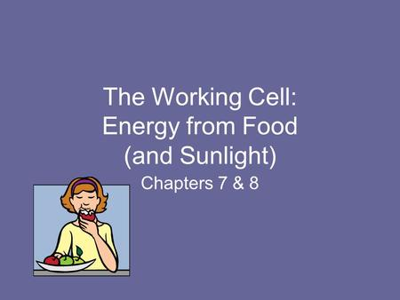 The Working Cell: Energy from Food (and Sunlight) Chapters 7 & 8.