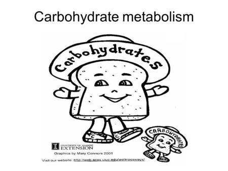 Carbohydrate metabolism. CHO supply Diet Endogenous reserves –Liver –Muscle –Blood Limited Anaerobic glycolysis –Anaerobic Does not need oxygen Occurs.