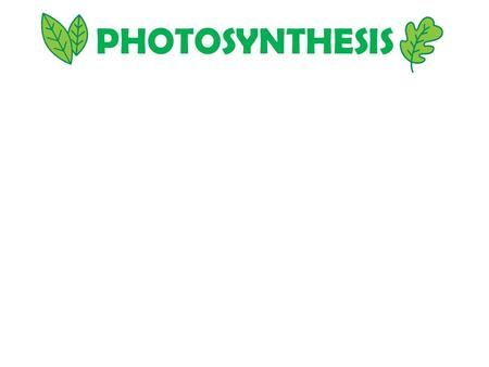 "PHOTOSYNTHESIS. ""LIFE from LIGHT and AIR"" PRODUCERS/AUTOTROPHS – CONVERT LIGHT ENERGY TO CHEMICAL ENERGY; SYNTHESIZE ORGANIC MOLECULES CONSUMERS/HETEROTROPHS."