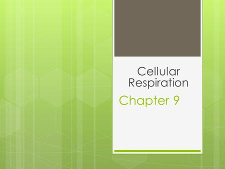 Cellular Respiration Chapter 9.