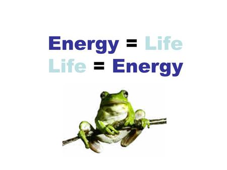 Energy = Life Life = Energy What is the ultimate source of energy on Earth? The Sun.