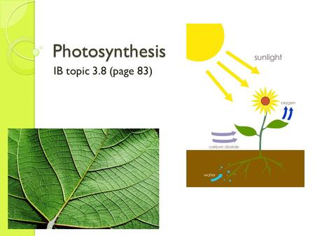 Photosynthesis IB topic 3.8 (page 83). What is photosynthesis? Photosynthesis is the production of organic compounds (carbohydrates, lipids, and proteins)