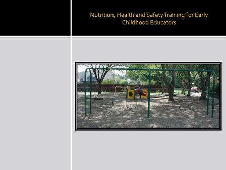 Nutrition, Health and Safety Training for Early Childhood Educators.