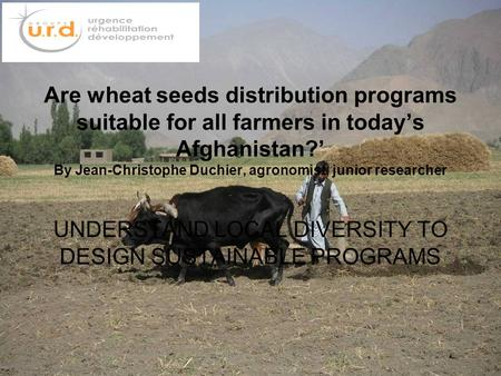 Are wheat seeds distribution programs suitable for all farmers in today's Afghanistan?' By Jean-Christophe Duchier, agronomist, junior researcher UNDERSTAND.