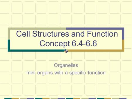 Cell Structures and Function Concept 6.4-6.6 Organelles mini organs with a specific function.