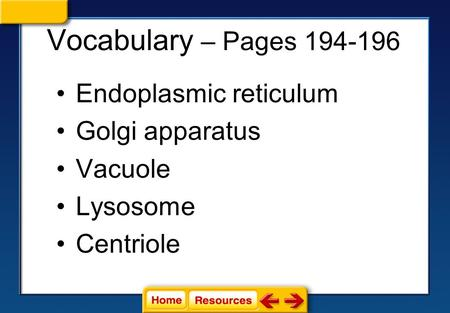 Vocabulary – Pages 194-196 Endoplasmic reticulum Golgi apparatus Vacuole Lysosome Centriole.