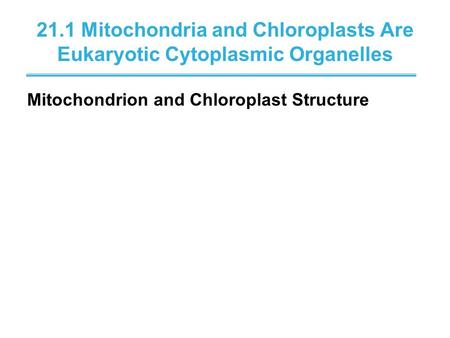 21.1 Mitochondria and Chloroplasts Are Eukaryotic Cytoplasmic Organelles Mitochondrion and Chloroplast Structure.