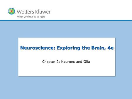 Copyright © 2015 Wolters Kluwer Health | Lippincott Williams & Wilkins Chapter 1: Applying Research to Everyday Exercise and Sport Chapter 2: Neurons and.