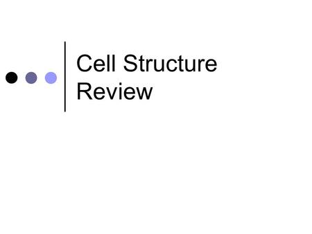 Cell Structure Review. Prokaryotic Cells Do not have a nucleus Found in bacteria.