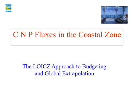 C N P Fluxes in the Coastal Zone The LOICZ Approach to Budgeting and Global Extrapolation.