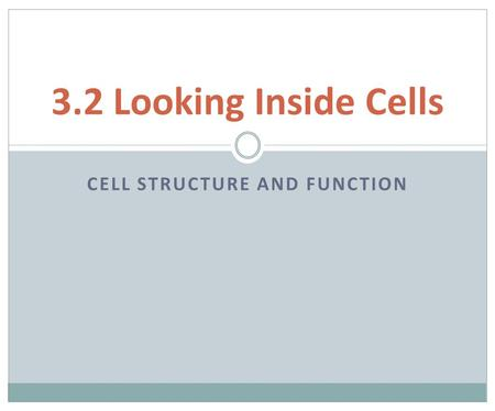CELL STRUCTURE AND FUNCTION 3.2 Looking Inside Cells.