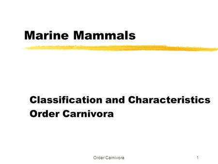 Order Carnivora1 Marine Mammals Classification and Characteristics Order Carnivora.